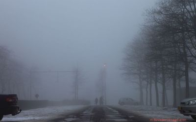 Mist 2008
